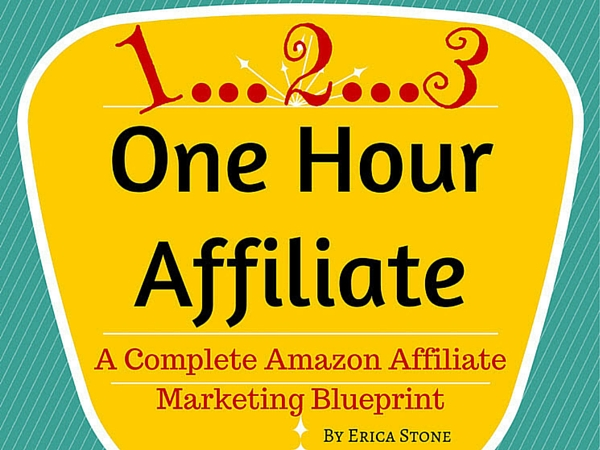 Erica stones 123 one hour affiliate review part 5 update im erica stones 123 one hour affiliate review malvernweather Image collections