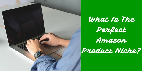 What Is The Perfect Amazon Product Niche_