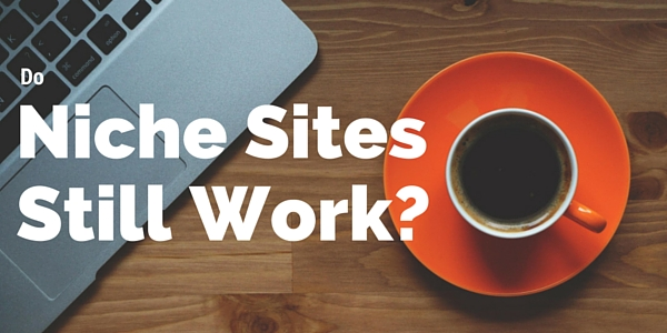 Do niches sites still work