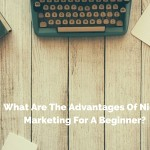 What are the advantages of niche marketing for a beginner