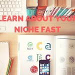 Learn About Your Niche Fast
